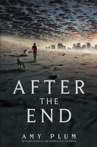 After the End by Amy Plum Book Cover